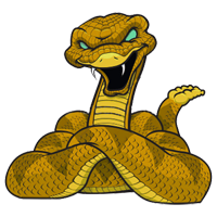 Albuquerque Rattlesnakes